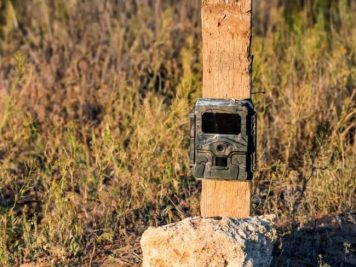 Best trail Cameras small